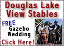 FREE Gazebo Weddings!