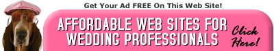 Websites for Wedding Professionals